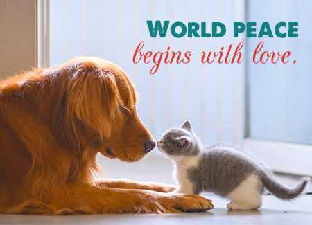 World peace begins with love.