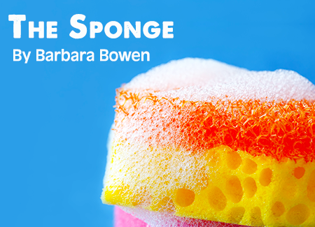 The Sponge By Barbara Bowen