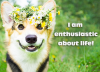 I am enthusiastic about life!