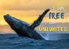I am free. I am unlimited.