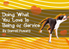 Doing What You Love Is Being of Service by Darrell Fusaro